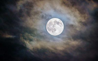 Noches de Dharma