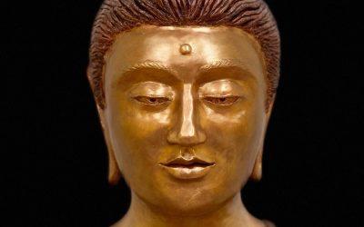 Meditation & Buddhism Class in English
